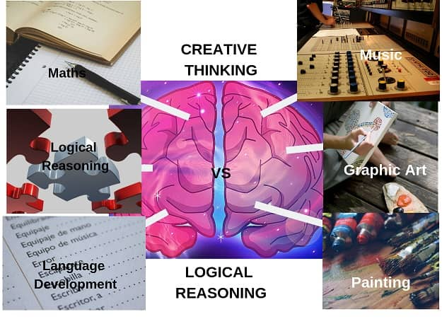 Creative force of the brain