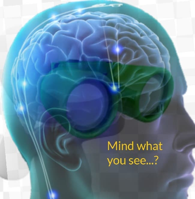 Theory of the mind - behaviourism