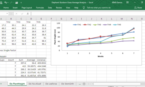 Data Entry: Working with Microsoft Excel in a Production Environment