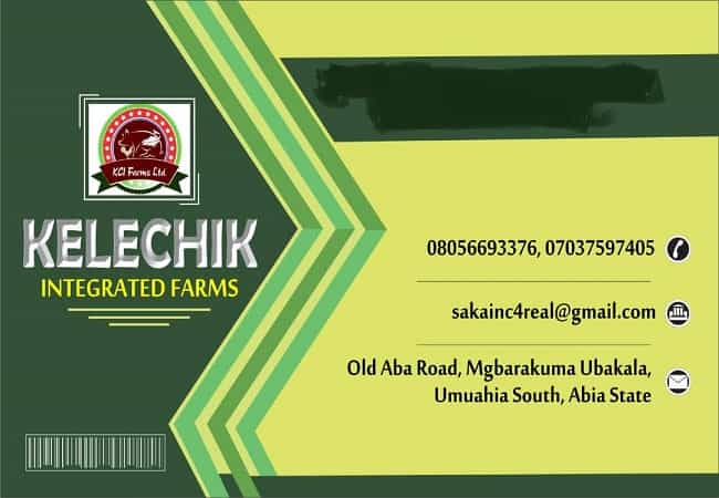 business and complimentary cards design service