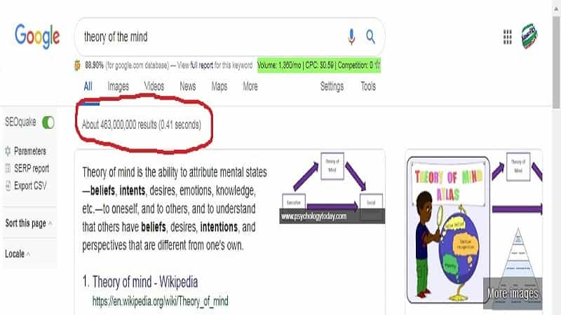 theory of the mind serp