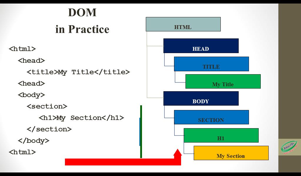 the html DOM tree