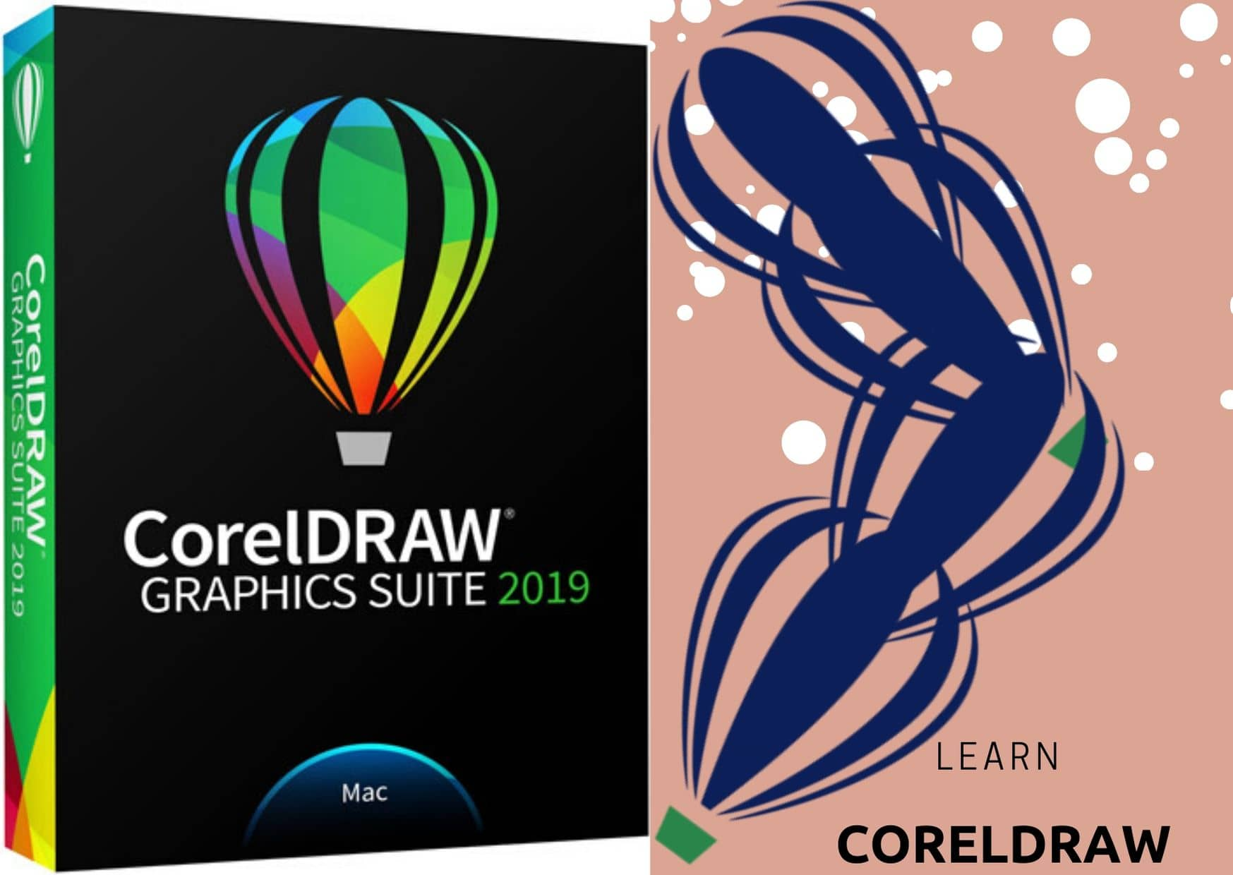 graphic packages: Learn coreldraw part 1